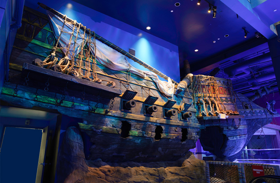 aes_sunken_galleon_minnesota_aquarium_04_lg_niveo
