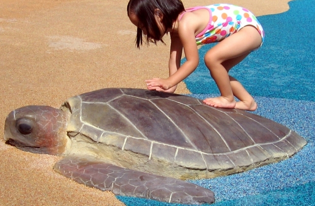 Attraction & Entertainment Solutions | Sculpture + Props | Sea Turtle Splash