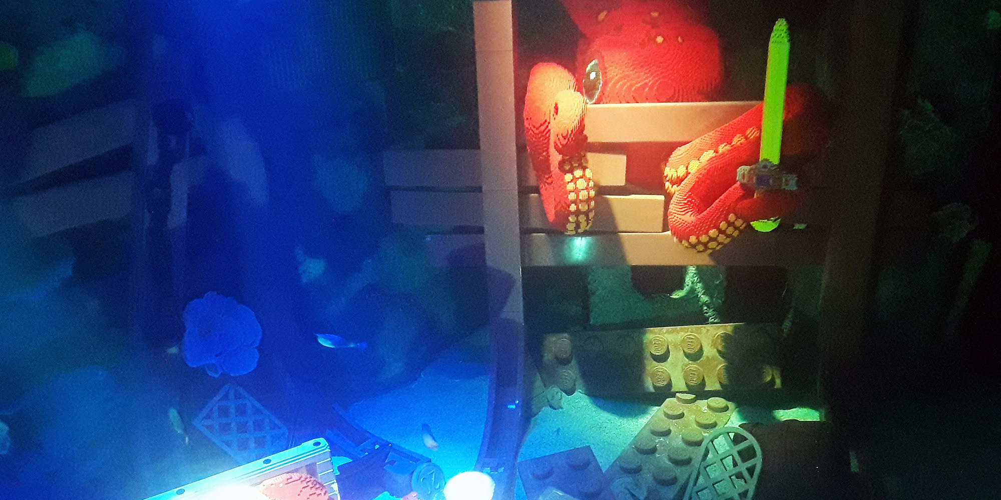 Lego octopus theming_2000x1000